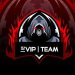 亗VIP丨TEAM